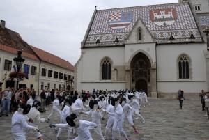 fencingmob1s